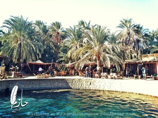 Overview Siwa Cleopatra spring Juba – siwa – western desert – Egypt  عين كليوباترا – سيوة – الصحراء الغربية – مصر 0043-DSC_0258