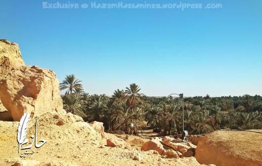 Overview Siwa جبل الدكرور – الصحراء الغربية – سيوة – مصر Dakrour Mountain – Siwa – Egypt 0066-DSC_0399