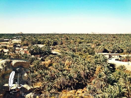 Overview Siwa قرية أغورمي– سيوة – الصحراء الغربية – مصر  Agourmy town – Siwa –western desert - Egypt0055-DSC_0364
