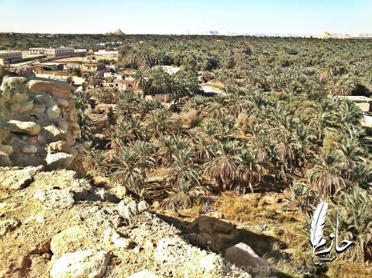 Overview Siwa قرية أغورمي– سيوة – الصحراء الغربية – مصر  Agourmy town – Siwa –western desert - Egypt0057-DSC_0390