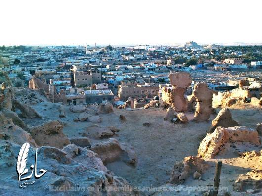 Overview Siwa قلعة شالي – سيوة – الصحراء الغربية – مصر Shali Castle and mountain – Siwa – Western desert – Egypt0086-DSC_0541