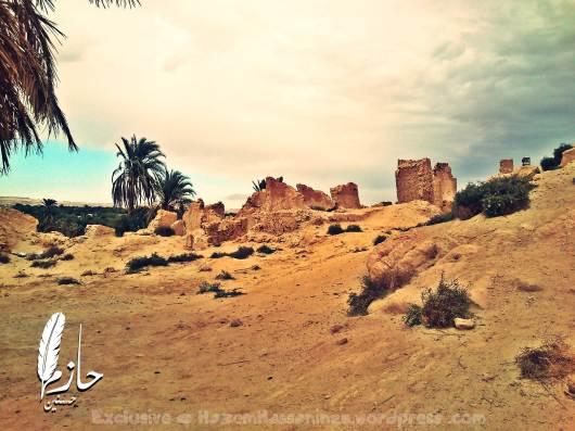 Overview Siwa Mountain of the Dead – Siwa – Western desert – Egypt  جبل الموتى – سيوة – الصحراء الغربية – مصر 0031-DSC_0137